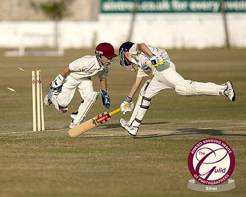 cricket bales wicket stumped ball bat