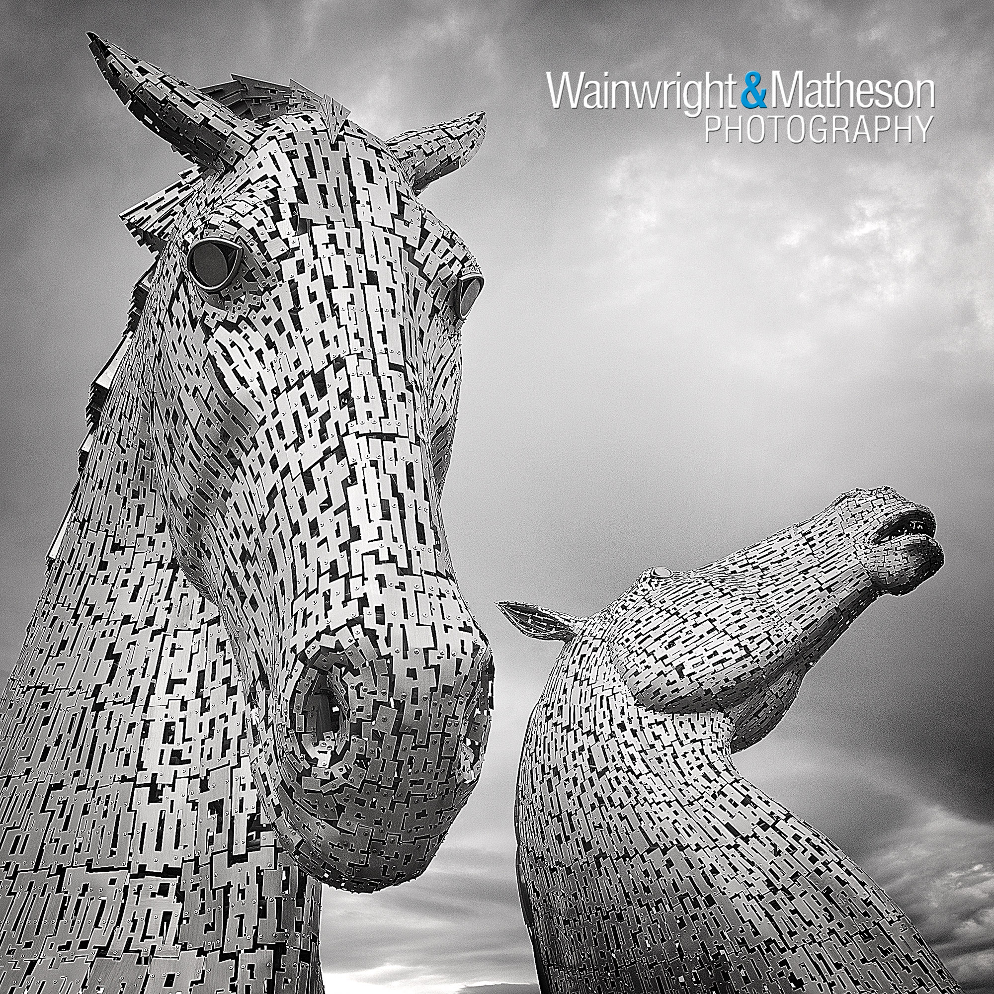 kelpie sculpture Scotland Falkirk