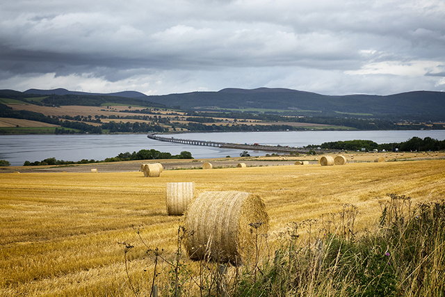 "bridge, cromarty, firth, hay, field, ""black isle"""